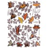 47 stickers Papillons National Geographic