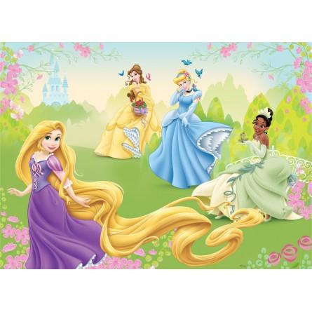Fresque murale Disney Princesses Peint Poster Géant